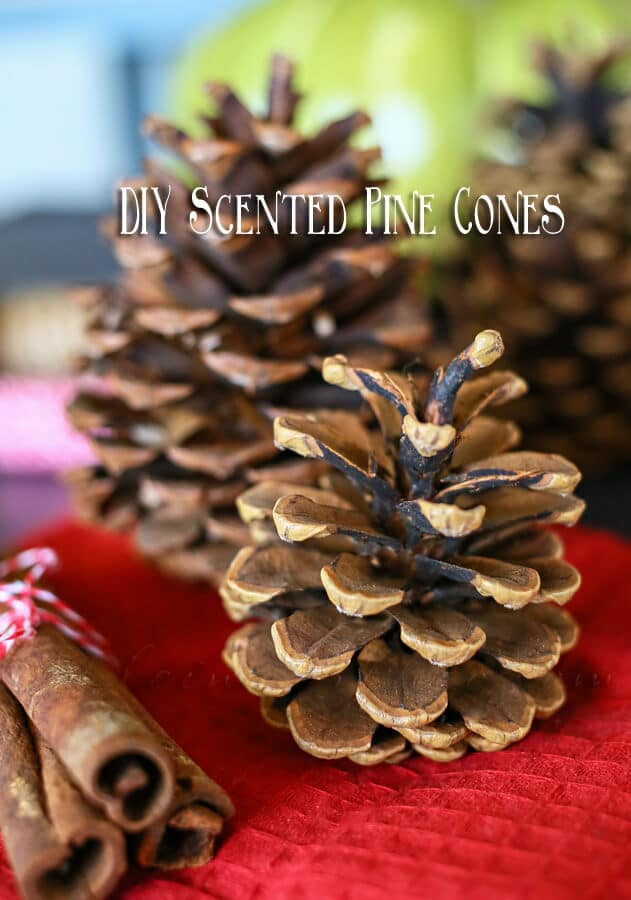 DIY-Scented-Pinecones1