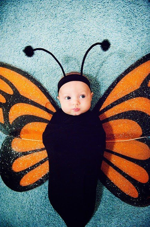 Halloween Costumes Ideas For Babies: DIY Halloween Costumes For Babies