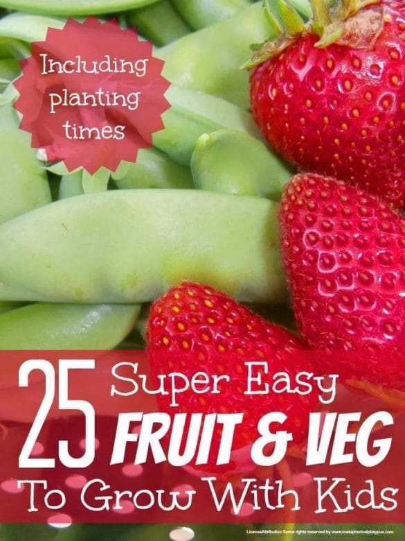 fruit and vegetables to grow with kids, teach kids to grow fruit and vegetables