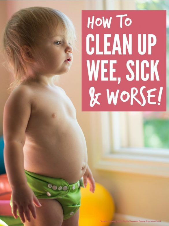 Clean Up Wee Sick and worse - how to clean up wee sick and worse when accidents happen ...