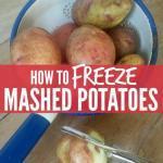 How To Bulk Freeze Mashed Potatoes
