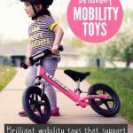 Fun Mobility Toys