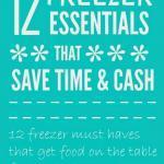 Time Saving Freezer Essentials