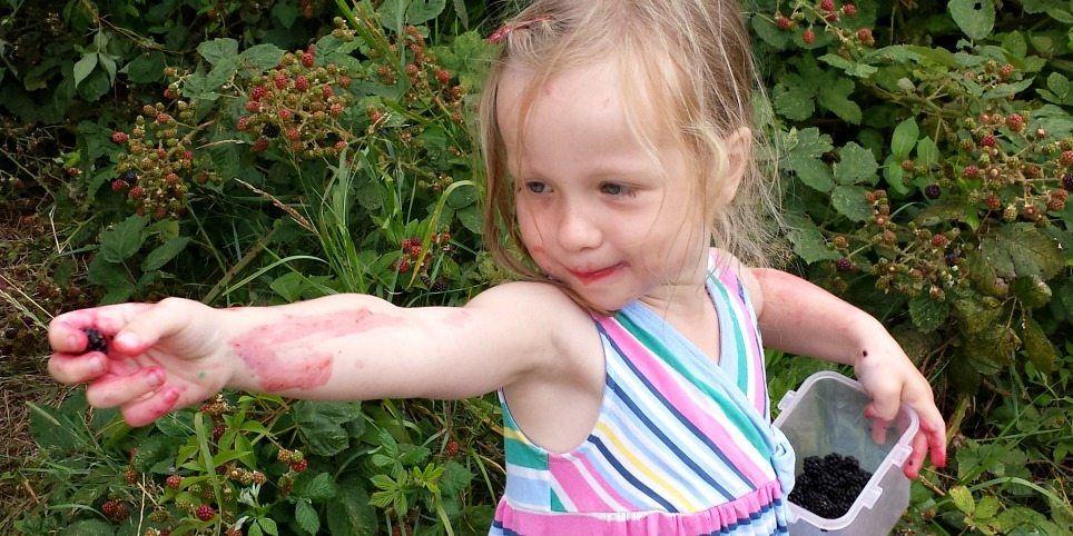Treating nettle stings ... how to treat nettle stings